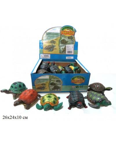 Черепаха Гонконг A009  6в. 24шт.в кор.