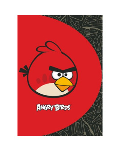 "Папка пласт. А4 Сentrum ""Angry Birds"" ""VISIT"" з 20 файлами 84699"