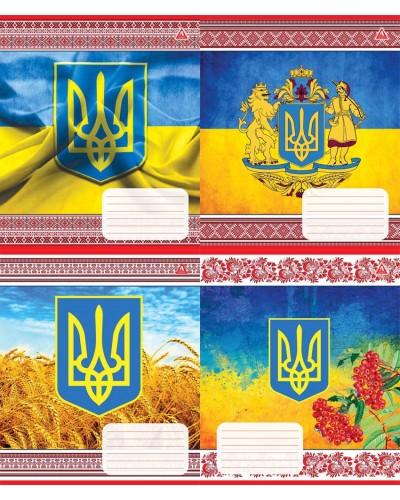 Зошит, 48 аркушів, лінія, Тетрада (Україна (62502))