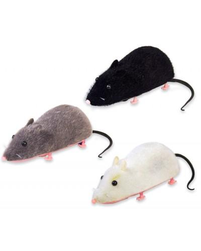 Животное PLM1901 крыса, 3 цвета, батар.,17см, в коробке 19см