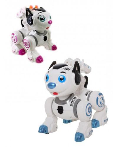 Интерактивное животное 0831 Собака, 2 цвета, свет, звук, движение, стреляет, в коробке 29*23*17см