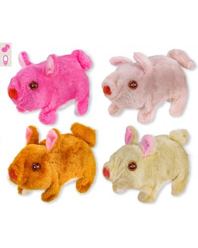 Мягкая игрушка M0662 свинка, 4 цвета, хрюкает, ходит, 15 см в пакете