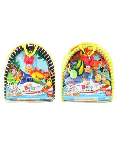 Коврик для малышей 663/668 с погремушками на дуге, 2 вида, в сумке 60*58*8см