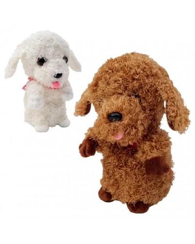 Мягкая игрушка-повторюшка M1978 собачка, 3 цвета, 18 см в пакете